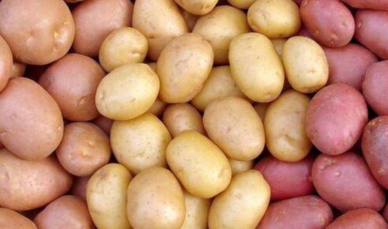 ziemniaki wcale nie są tuczące!